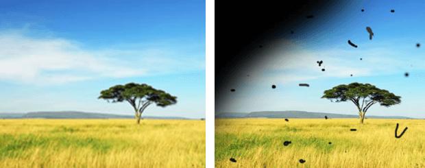 Visión desprendimiento de retina