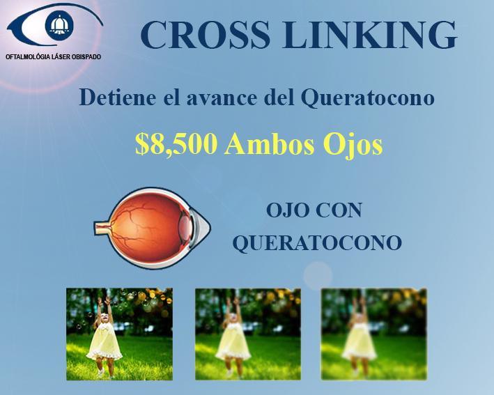 Cross Linking servicios